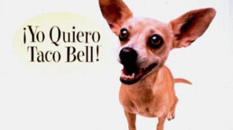 Taco Bell Gidget